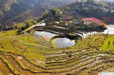 campos-arroz-sapa